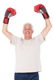 Senior man in boxing gloves. On white background Royalty Free Stock Photography