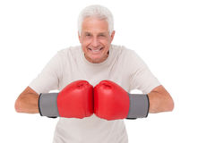 Senior man in boxing gloves. On white background Royalty Free Stock Image