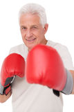 Senior man in boxing gloves. On white background Stock Photo