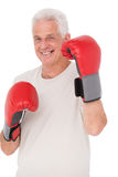 Senior man in boxing gloves. On white background Stock Images