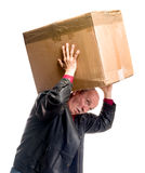 Senior man carries a heavy box Stock Image