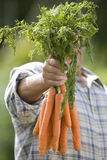 Senior man with carrots obscuring face Royalty Free Stock Photography