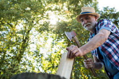 Senior man chopping firewood Royalty Free Stock Photos