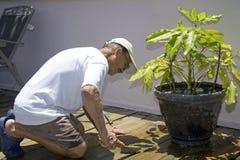 Senior man cleaning deck Stock Photo
