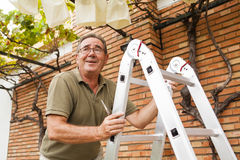 Senior man climbing a ladder. Garden works. royalty free stock photography