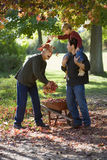 Senior man collecting autumn leaves in garden, grandson on father's shoulders, throwing leaves at grandfather Stock Images