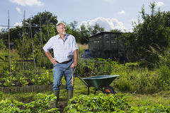 Senior Man In Community Garden. Happy senior men standing in community garden royalty free stock photography