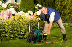 Senior man crimping hose in the garden Royalty Free Stock Photography
