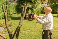 Senior man cutting tree with chainsaw. In the garden stock photos