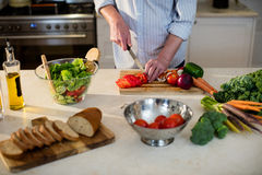 Senior man cutting vegetables for salad Stock Photo