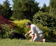 Senior man digging in garden Royalty Free Stock Image