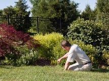 Senior man digging in garden Stock Image