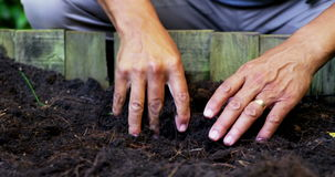 Senior man digging in the soil to dig plant. On a sunny day stock video footage