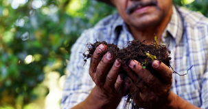 Senior man digging in the soil to dig plant. On a sunny day stock footage