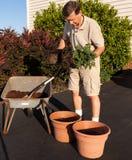 Senior man digging soil in wheelbarrow Stock Images