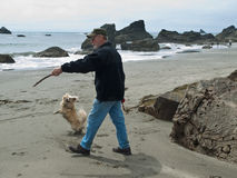 Senior man and dog on beach. Senior man throwing a stick to an excited small dog on a rock strewn ocean beach Royalty Free Stock Images
