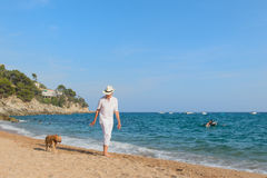 Senior man with dog at the beach Stock Image