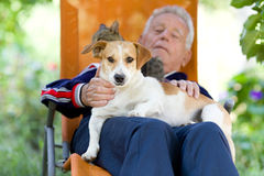 Senior man with dog and cat. Senior man lying in sunbed in courtyard while dog and cat sitting in his lap royalty free stock images