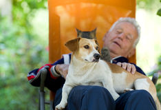 Senior man with dog and cat. Senior man lying in sunbed in courtyard while dog and cat sitting in his lap stock image
