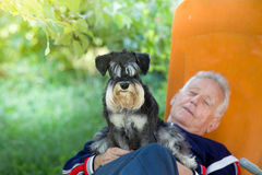 Senior man with dog. Senior man lying in sunbed in courtyard while dog sitting in his lap stock images