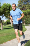 Senior Man Exercising In Park Royalty Free Stock Images