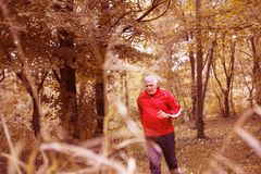 Senior man exercising in the park. royalty free stock photos