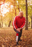 Senior man exercising in the park. royalty free stock photo