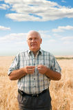 Senior man in field Royalty Free Stock Image
