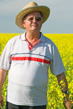 Senior man in a field of rape Stock Photo