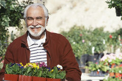 Senior Man With Flowerpots Stock Photo