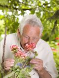 Senior man with flowers Royalty Free Stock Photography
