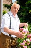 Senior man gardening. Senior watering his flowers on the balcony Stock Photography