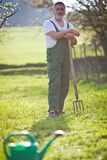 Senior man gardening in his garden Royalty Free Stock Photos