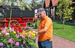 Senior man gardening Royalty Free Stock Photos