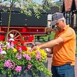 Senior man gardening Stock Image