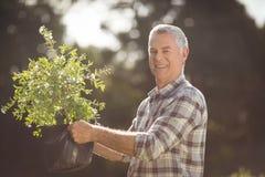 Senior man gardening. Portrait of happy senior man gardening in backyard Royalty Free Stock Photography