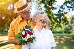 Senior man giving bouquet of colored flowers to his wife Royalty Free Stock Image