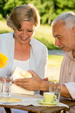 Senior man giving present to his wife Stock Image
