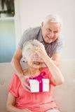 Senior man giving a surprise gift to senior woman Stock Photos