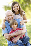 Senior man and grandchildren in park. Senior men and grandchildren in park royalty free stock image