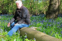Senior man happy and peaceful in a bluebell wood. Stock Photo