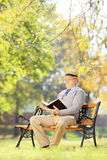 Senior man with hat seated on a wooden bench reading a book Royalty Free Stock Image