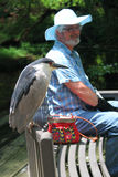 Senior Man with Hat Sitting on a Bench on a Sunny Day. Elderly man with hat and beard sitting on bench with Black-Crowned Night Heron Royalty Free Stock Photos