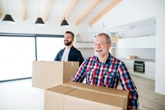 A senior man helping his son with furnishing new house, a new home concept. A cheerful senior man helping his mature son with furnishing new house, a new home royalty free stock photography