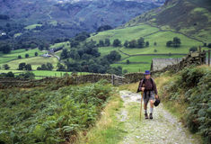 Senior man hiking in England Royalty Free Stock Photo