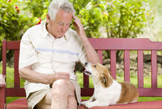 Senior man with his dog Royalty Free Stock Photography