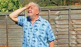 Senior man cannot believe it. Exasperated. A senior man with his hand to his forehead feeling exasperated. He cannot believe what he has just seen or heard stock image