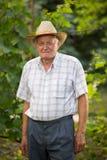 Senior man in his vineyard. Posing, looking in camera Stock Image