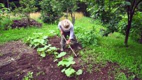 Senior man hoeing vegetable garden soil Stock Photo