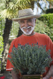 Senior Man Holding Potted Plant Royalty Free Stock Images